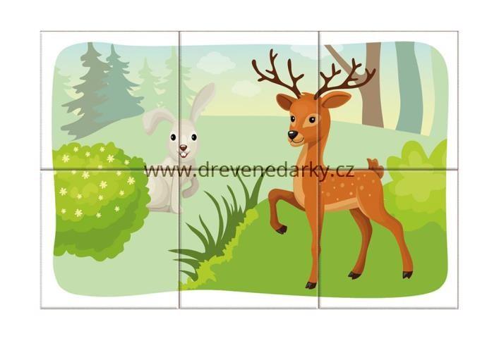 obrazkove-kostky-lesni-zviratka